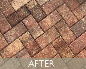 patio-paver-after
